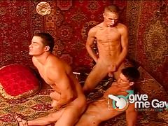 Three stiff boners for hot gay encounter