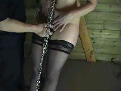 Tit hanging