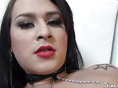 shemale, solo, stockings, jerk off, goth, tattooed, lipstick, black hair, tranny milf, fishnets, shemale solos, tranny access, leticia rodrigues