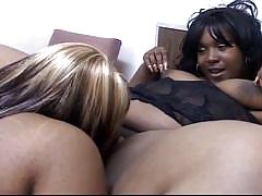 Chubby 500lbs lesbian bbw ebony babes have rear pussy licking