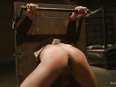 Immobilized and fucked by his executor