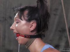 small tits, milf, bdsm, lesbians, brunette, tied up, clamps, executor, mouth gagged, real time, face torture, real time bondage, wenona, darling
