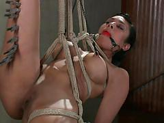 Beretta james is tied up and tortured