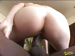 Cindy sterling opens her cunt for a big black dick