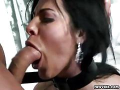 Milf veronica rayne  sucks big cock