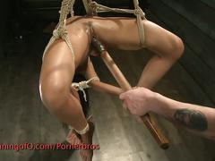 Selecting the perfect slave to train