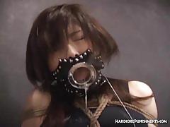 Japanese brunette endures a wild bdsm session