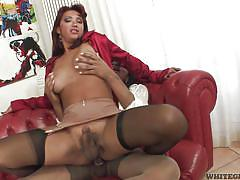 Dark skinned trannies suck each other's cocks @ shemales fucking shemales #4