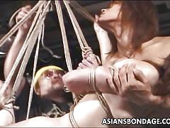 Asian is hung from the ceiling with rope
