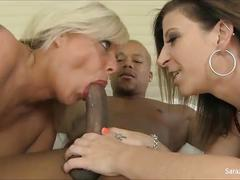 Big tit cougars sara jay and carey try out new black cock