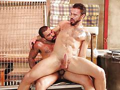 Two hairy dudes fuck each other