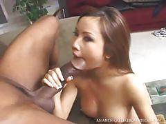 Horny tiny asian girl has a big black cock to suck