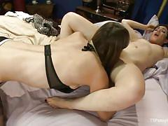 hairy, shemale, kissing, pussy licking, brunette babe, sexy lingerie, tranny babe, ts pussy hunters, kink, joey minx, kelly klaymour
