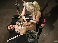 fisting, blonde, bdsm, mistress, lesbian domination, brunette, ropes, clamps, ball gagged, whipped ass, kink, mandy muse, cherry torn