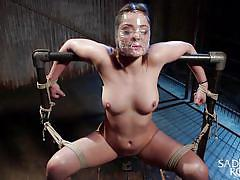 bdsm, spanking, domination, tied up, breath play, big breasts, brunette babe, device bondage, rope bondage, sadistic rope, kink, dani daniels