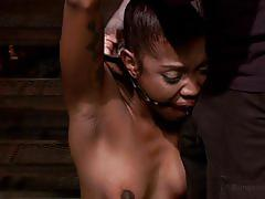 Ebony got her petite body whipped while tied up