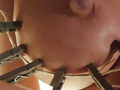 blonde, bdsm, mistress, lesbian domination, huge dildo, busty milfs, nipple clamps, ass whipping, rope bondage, whipped ass, kink, chanel preston, summer brielle