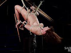 bdsm, spanking, domination, dildo, vibrator, pussy fingering, busty babe, tied up, rope bondage, sadistic rope, kink, ariel x