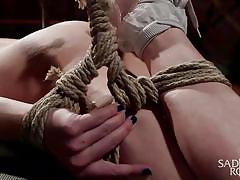whip, bdsm, spanking, babe, domination, vibrator, tied up, ball gag, rope bondage, sadistic rope, kink, casey calvert