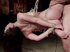 Sexy brunette slave gets bound and assfucked hard