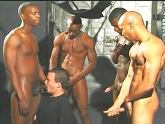 Horny white studs opens wide for interracial gangbanging fun