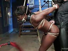 threesome, bdsm, babe, ebony, interracial, whipping, tied up, from behind, black hair, mouth gagged, shibari, rope bondage, the training of o, kink, gage, ana foxxx