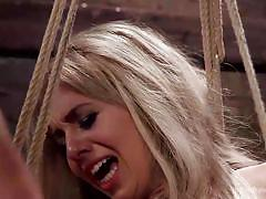 blonde, babe, dildo, vibrator, fingering, tied up, anal insertion, ropes, the training of o, kink, mickey mod, madelyn monroe