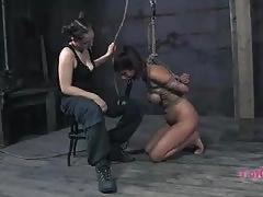 Lavender stripping and fucked