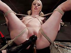 blonde, bdsm, babe, vibrator, tied up, dildo fuck, nipple clamps, rope bondage, sadistic rope, kink, cherry torn