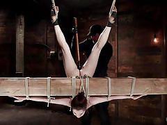 teen, bdsm, whipping, punishment, domination, upside down, rope bondage, torture device, hogtied, kink, kasey warner