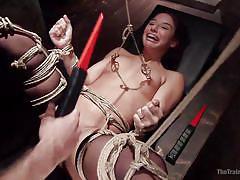 small tits, brunette babe, black stockings, nipple clamps, electric wand, rope bondage, the training of o, kink, michael vegas, abella danger