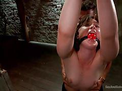 bdsm, hairy, domination, tied up, from behind, submission, brunette babe, ball gag, sex dungeon, sex and submission, kink, jodi taylor, marco banderas