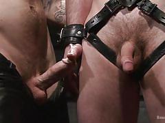 tattoo, bdsm, whipping, tied up, gay handjob, gay, gay domination, bondage device, ball gag, bound gods, kink men, scott harbor, christian wilde