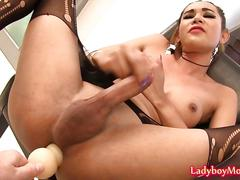 Ladyboy nattcha jerks off with anal probe inside