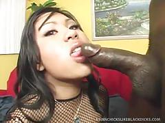 Asian honey craves big black cock