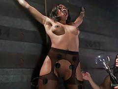 small tits, ebony, interracial, tied, lesbian domination, pussy fingering, brunette babes, electrodes, electro bdsm, electro sluts, kink, sasha banks, lea lexis