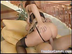 Stockings babe gets ass fucking