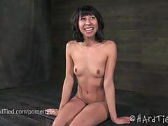 Vivi marie gets tortured by cyd black