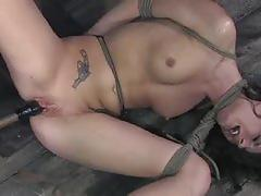 Kinky taylor mae exploring the bdsm practices