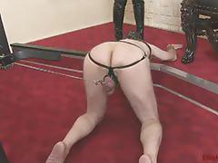Ella kross humiliation game