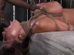 Change of scenery for ava devine in bdsm fuck