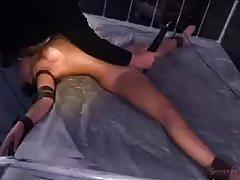 jynx maze, brunette, hardcore, big tits, cumshot, babe, bdsm, bondage, slave, gorgeous, beauty, black hair, torture, humiliation, fake tits, dungeon, glamour