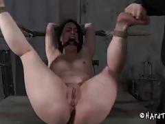 brunette, babe, bdsm, big ass, toys, dildo, slave, beauty, humiliation, dungeon, round ass, glamour