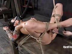Tattooed slut tormented by mistress claire adams