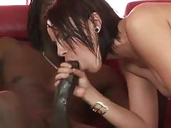 Horny slut drilled by a huge black cock