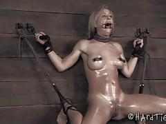 cherie deville, big tits, blonde, busty, babe, bdsm, bondage, big ass, forced, slave, gorgeous, big boobs, mistress, beauty, whip, amateur, fetish, first time, torture, humiliation