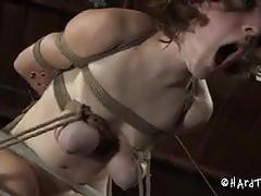 brunette, babe, pussy, bdsm, bondage, girlfriend, forced, beauty, ex-girlfriend, torture, painful