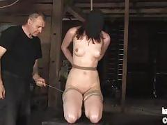 Pd pulls calico's tongue with rope and whips her