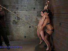 Ariel bondaged and machine fucked