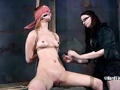 Calico tortured by claire adams